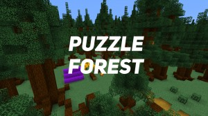 Download Puzzle Forest for Minecraft 1.16.5